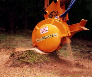 stump removal Adelaide cost