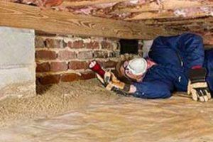 premiumprepurchaseinspections-building-inspector
